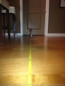 10 feet with flash