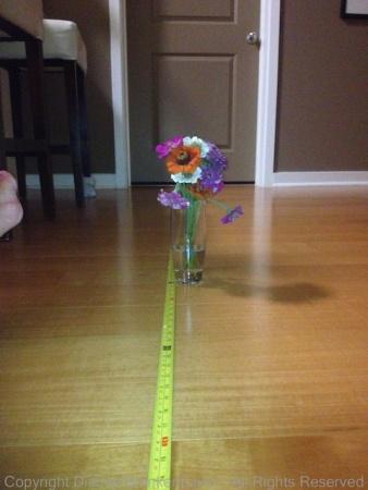 3 feet with flashlight