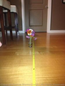 4 feet with flash