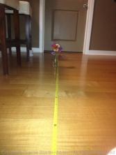 6 feet with flash