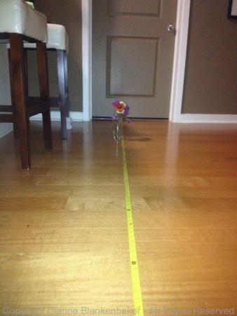 7 feet with flash