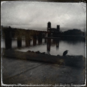 Tinto 1884 lens and D-type film--the heron is out of focus
