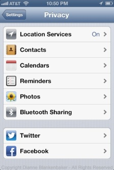 Location Services appears when you open the Privacy menu