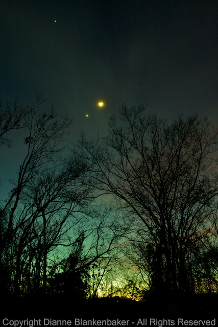 Mars, Venus, and the moon are not symmetrical, but the trees create symmetry