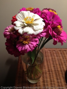 No image stabilization with flowers under lamp