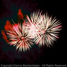 Fireworks often form symmetry