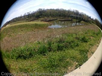 Wide Wetland