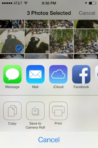 "iOS7 Options when you tap the ""share"" icon"