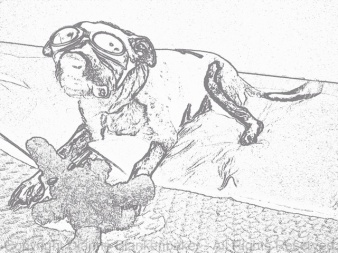 Revised image using Con Tours effect in Paper Camera