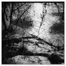 The patterns in the ice are more visible in B&W