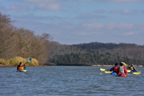 During Kayaking tour of Hiwassee Reserve