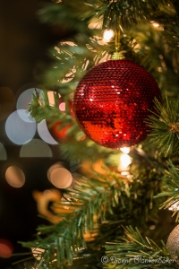 The only thing that changed in this shot from the previous was the aperture is now f/2.8 and the shutter speed is 1/5 second. Notice how little of the tree remains in focus around the ornament.